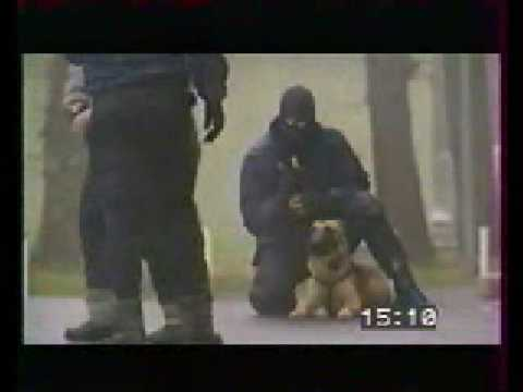 Franse Politiehonden
