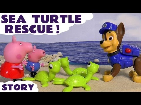 Peppa Pig Paw Patrol Sea Turtle Rescue with Play Doh Toys and Thomas and Friends English Episode