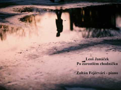Leoš Janáček: Po zarostlém chodnícku - On an Overgrown Path, Zoltán Fejérvári