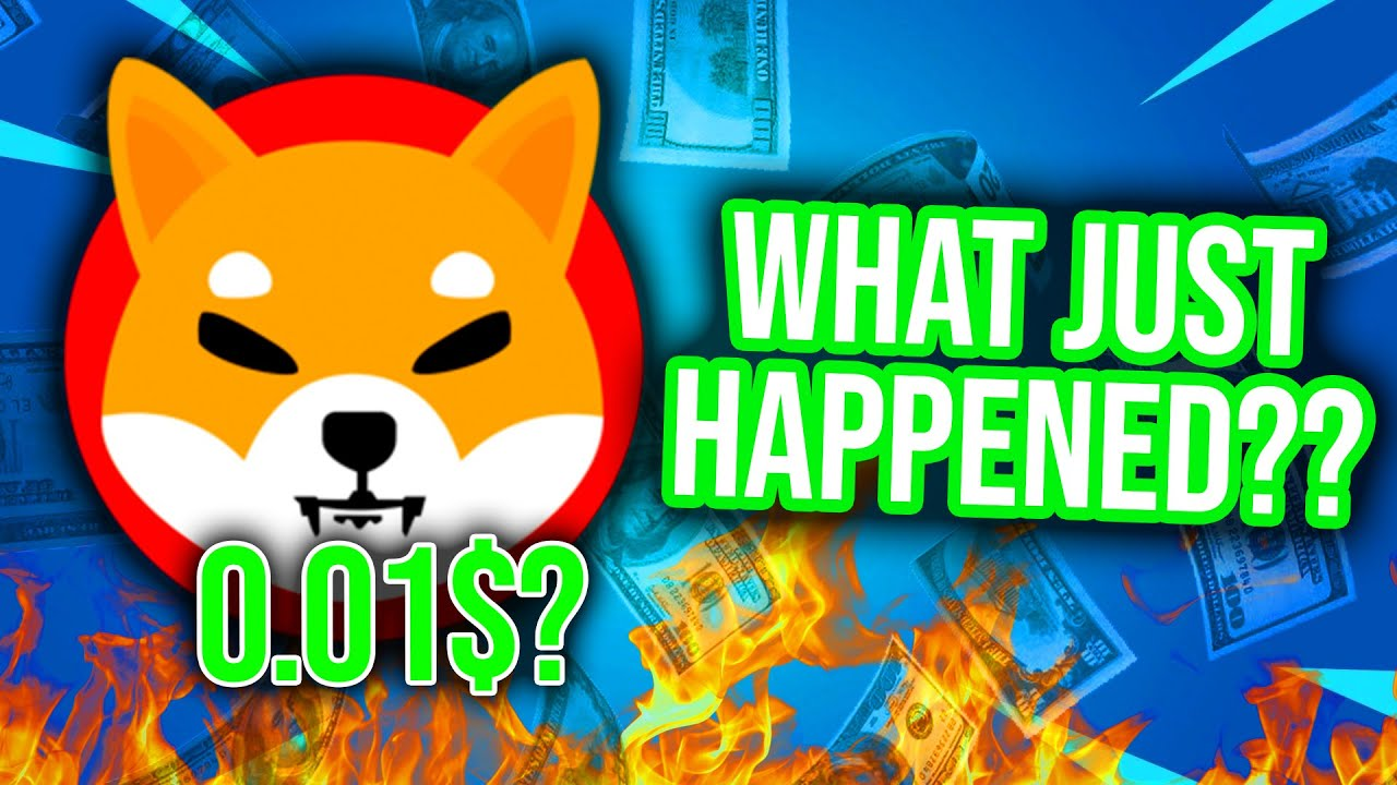 SHIB coin: Why did Shiba Inu skyrocket in value? What's next?