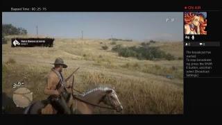 Red Dead redemption 2 online