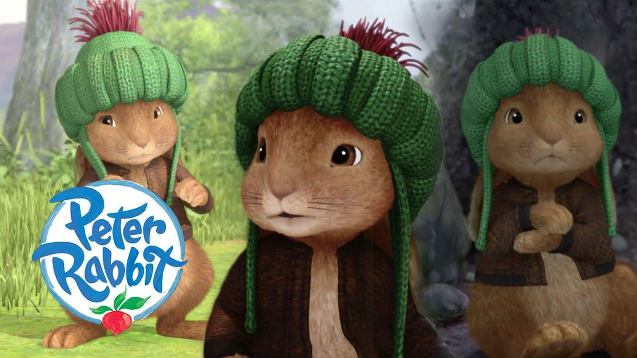 @Peter Rabbit - Where are you Benjamin?   Cartoons for Kids