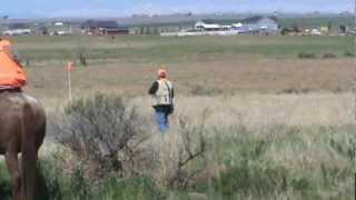 Grace Senior Hunt Test