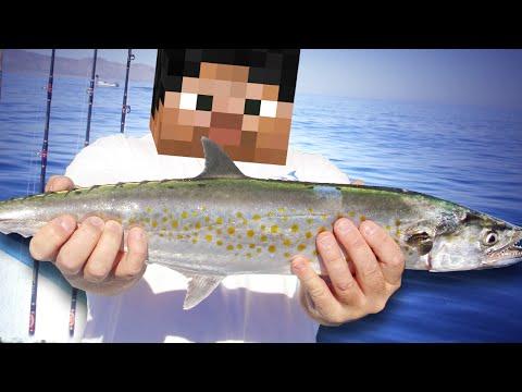 рыба юмор