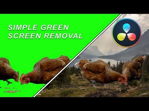 Easy Green Screen