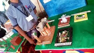 Science fair 2017 award winning project