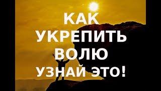 Слабая воля? Узнай как укрепить Православный взгляд.
