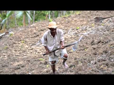 Haiti 2013 with Saint Boniface Haiti Health in Fond des Blancs