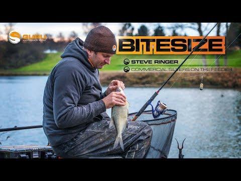 GURU BITESIZE: Commercial Silvers On The Feeder - Steve Ringer
