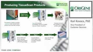 OriGene Webinar Series: TissueScan cDNA Arrays