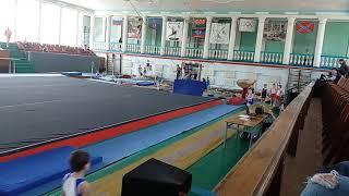 Спортивная гимнастика. 3 разряд. 28.04.18. Арефьев Егор(1)