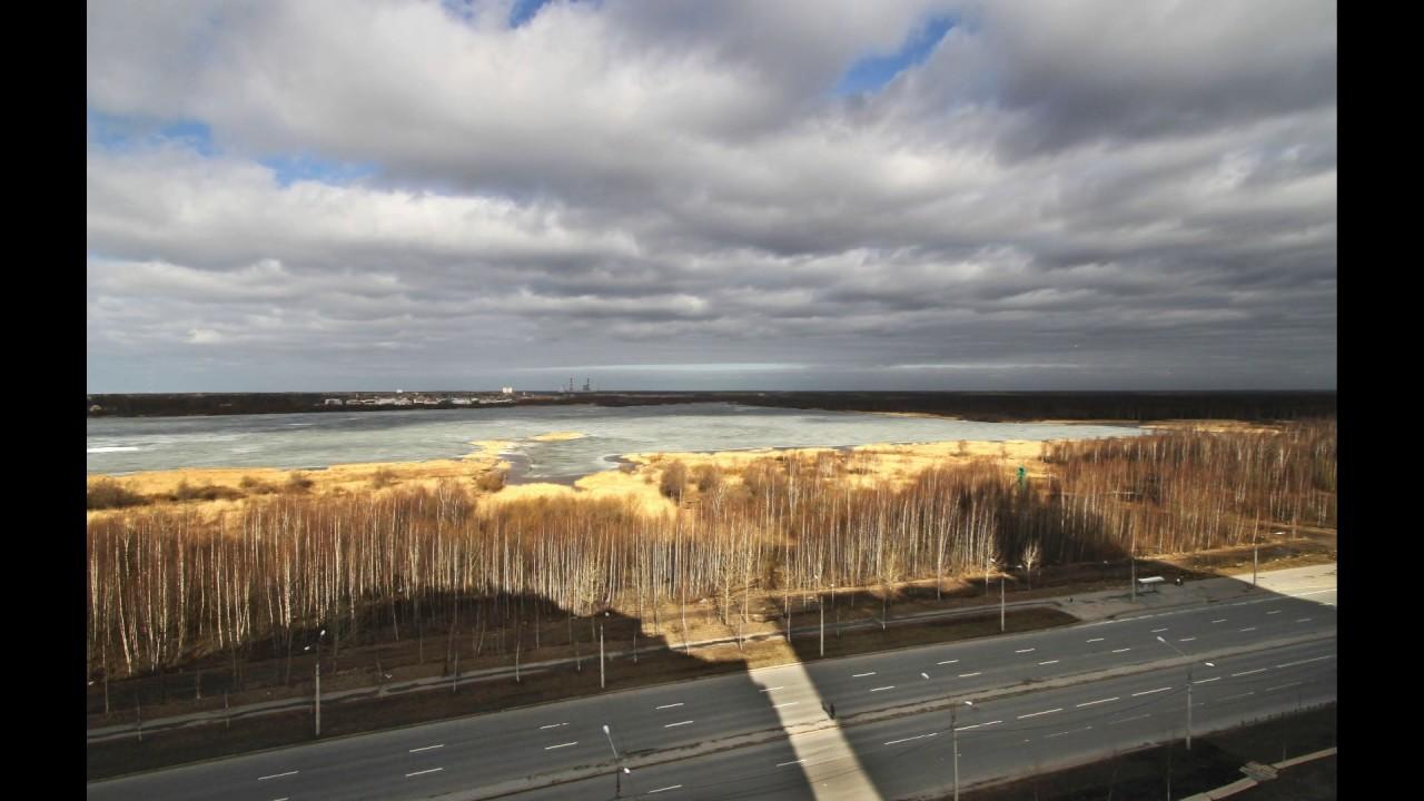 разнообразными пляж лахтинский разлив фото заднему плану