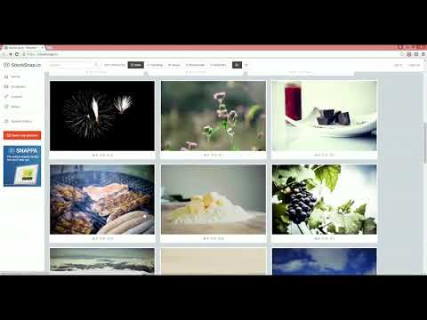 Free Copyrights Stock Images #2