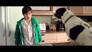 Vampire Dog - Trailer