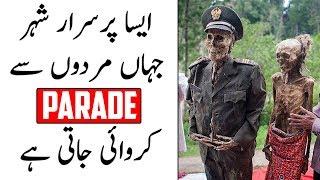 Aesa Shehar Jahan Murday Bhi Parade Karte Hain | The Urdu Teacher