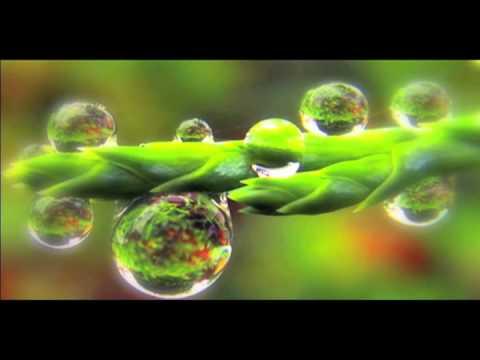 BlurryLenses - Bubble Fusion