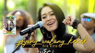 Goyang Walang Kekek - Vita Alvia ( Official Music Video )