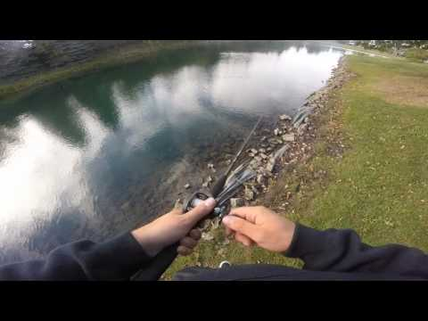 Top 5 Bass Fishing Lakes In Cook County IL