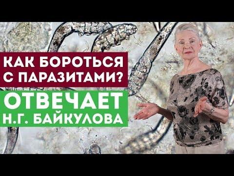 Как бороться с паразитами? Отвечает Н.Г. Байкулова