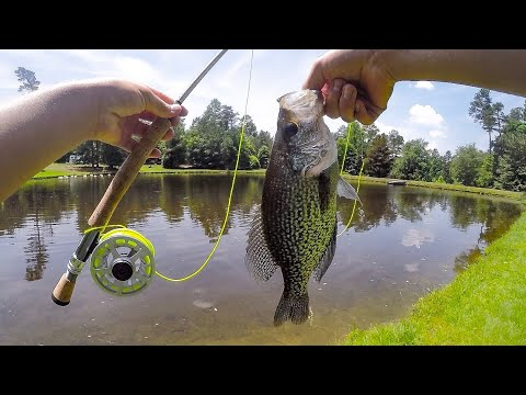 Fly Fishing For BIG Crappie