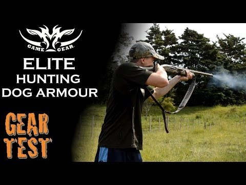 GEAR TEST - Elite Hunting Dog Armour - 12g Shotgun Proof