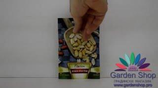 Семена арахиса - Первый Арахис (Арахисовое hypogea)(http://goo.gl/tfSdXy Если вы любите орехи с радостью представляем семена арахиса (арахисовое hypogeal), который вы можете..., 2016-01-09T09:43:04.000Z)