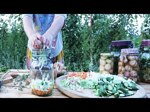 My Torshi Recipe Collection Find Your Favourite Pickle ترشیهای خوشرنگ من مخلوط، سیرترشی ترشی پیازچه