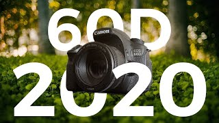 Canon 60D in 2020