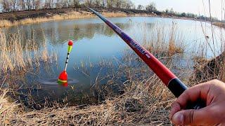 Рыбалка на карася в браконьерских местах ЛОВЛЯ КАРАСЯ на ПОПЛАВОК и ПИКЕР