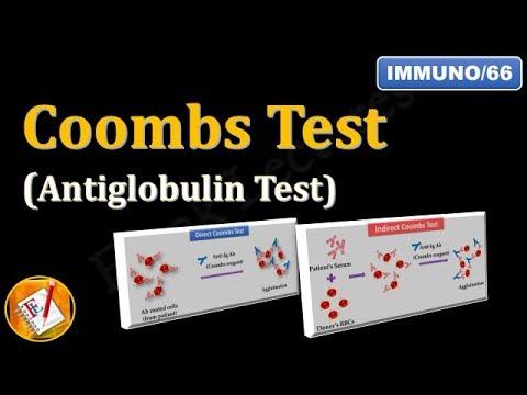 Coombs test (or Antiglobulin Test) (FL-Immuno/66)