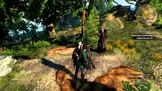 The Witcher 3: Shock Therapy