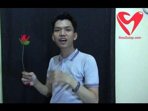 Trik Sulap Gratis - Tisu Jadi Bunga Mawar (Romantis)