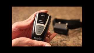 How To Use Your Havahart® Remote Trainer