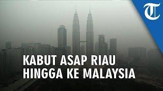 Kebakaran Hutan dan Lahan di Riau, Asap Menyebrang ke Malaysia