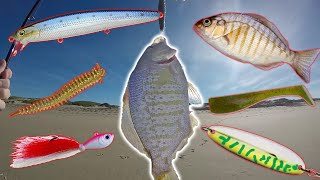 How to Catch Surf Perch -  Rods, Reels and Tackle