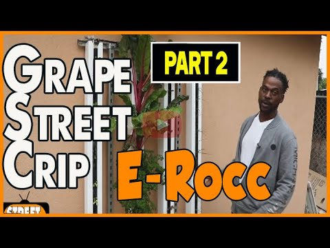 Grape Street Crip is actually growing fresh food with aquaponic system in Watts (pt2of2)