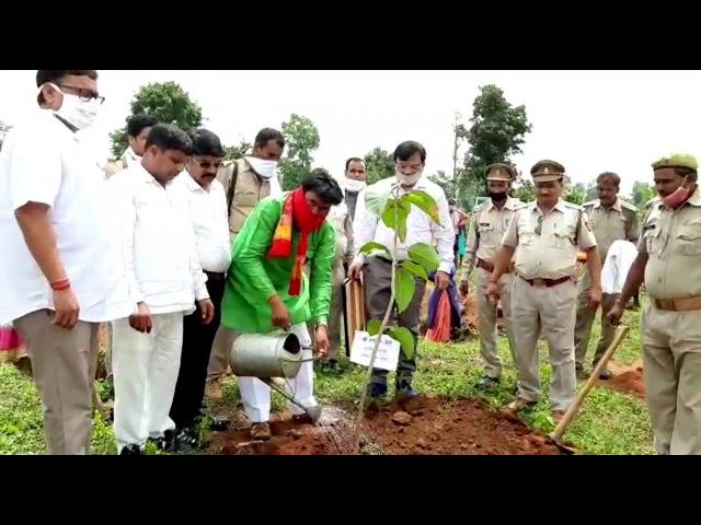 विधायक ने पौध रोपण कर दिया पर्यावरण संरक्षण का संदेश