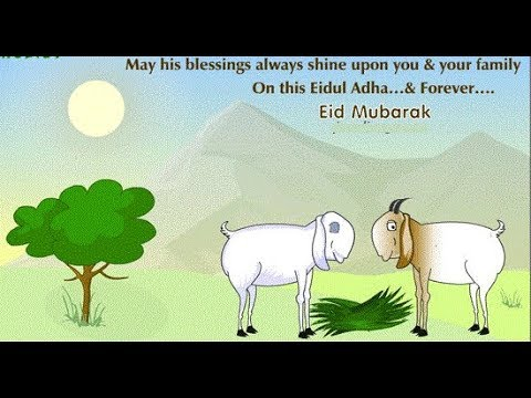 Happy Bakrid Greetings,Eid Ul-Adha Images & Greetings,wishes,Ecards,Messages Video