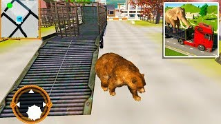 Wild Animal Transporter Truck Simulator Games 2019 - Angry Bear Transport -  Android Gameplay FHD