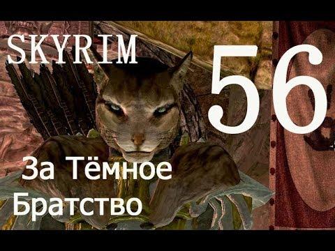 КУНИЛИНГУС - Фото и видео куни
