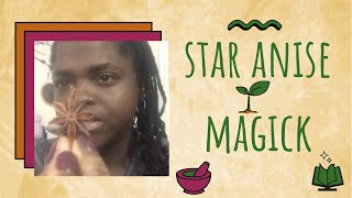 Star Anise Herbal Magick #9