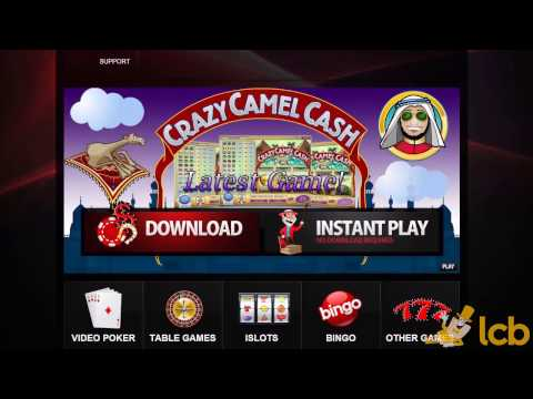 DomGame Casino Video Review