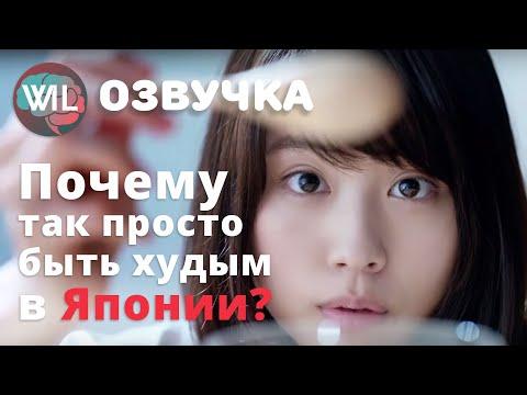 Почему быть худым в Японии так просто?/What i've learned на русском/Гвоб