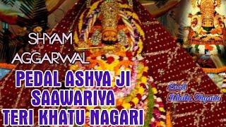 Pedal Ashya Ji सावरिया तेरी खाटू नगरी || Superhit Khatu Shyam Ji Bhajan || Shyam Agarwal