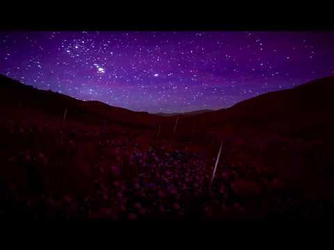 RL Grime - Undo (Instrumental) [Official Audio] Mp3