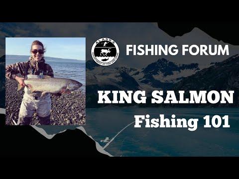 King Salmon Fishing 101
