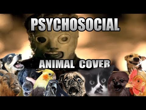 Slipknot - Psychosocial (Animal Cover)
