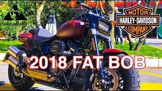 Harley Davidson Fat Bob 114 2018, İlk İzlenim, Motovlog