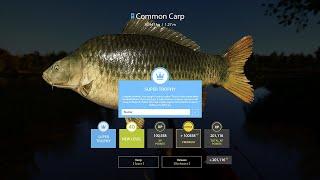 Russian Fishing 4 RF4 Carp Ultra HotSpot BLUE TROPHY COMMON OTHER Amber Lake 1 3 2021