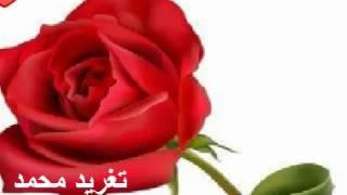 زيدان ابراهيم اذا الخاطر سرح منك تأكد انه راح ليك قريب منك تغريد محمد